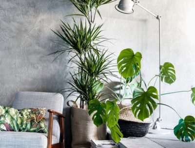 Contemporary Design Trend: Outside Inside