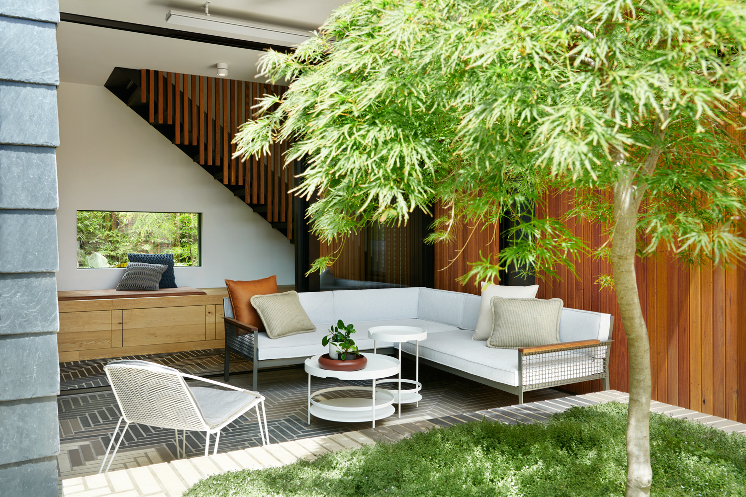 A serene internal courtyard with a beautiful Japanese maple at its centre.